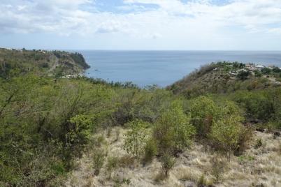 20180521 Dominica New World (1)